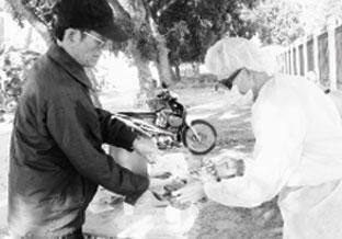 Bắc Ninh nỗ lực ngăn chặn dịch bệnh, phát triển chăn nuôi